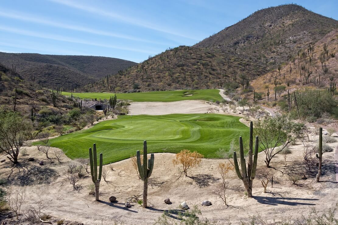 Desert Golf Course mit Kakteen
